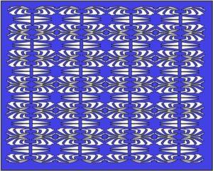 Otok Kornat Patroon 1